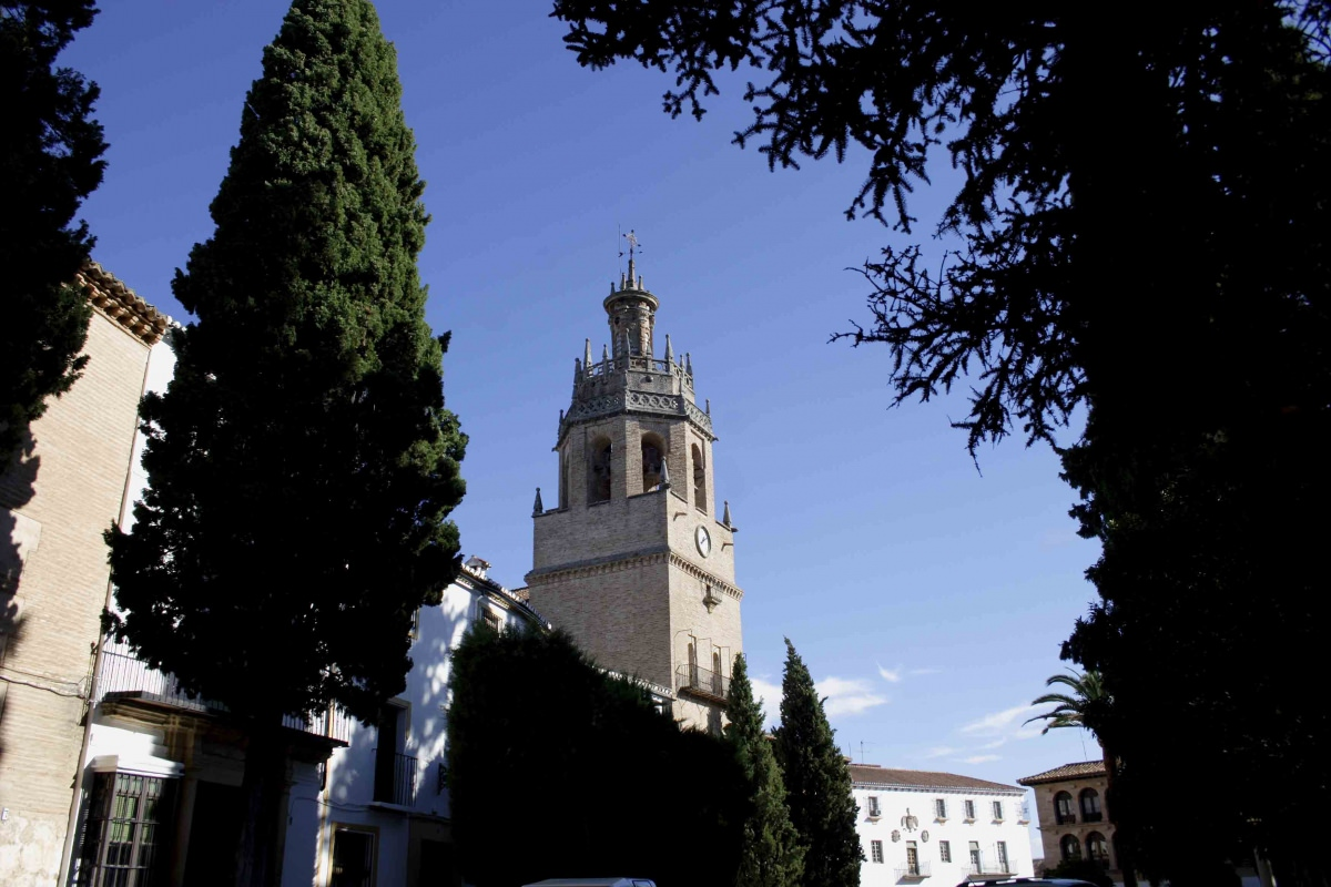 Colegiata de Santa María la Mayor y Ayuntamiento