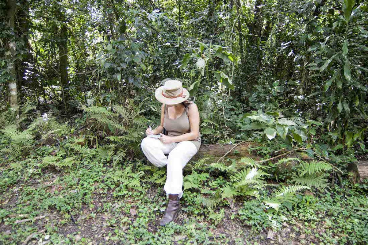 Bosque de Kakamega