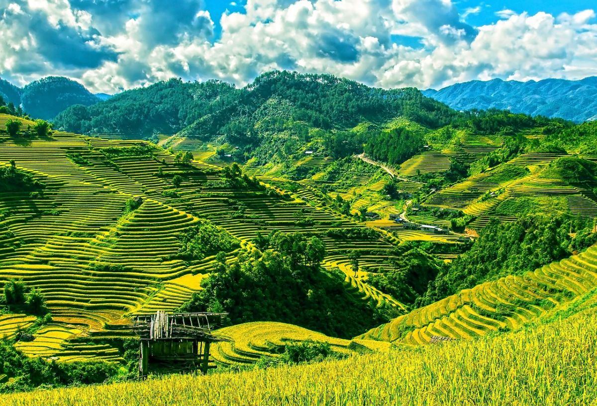 ¿Cuándo viajar a Vietnam?