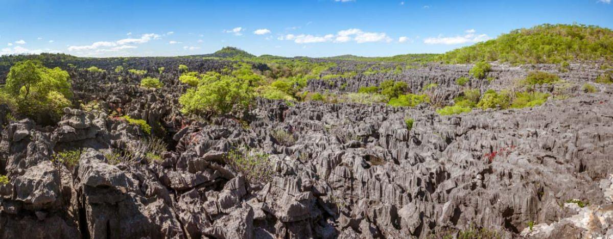 Reserva natural del Ankarana