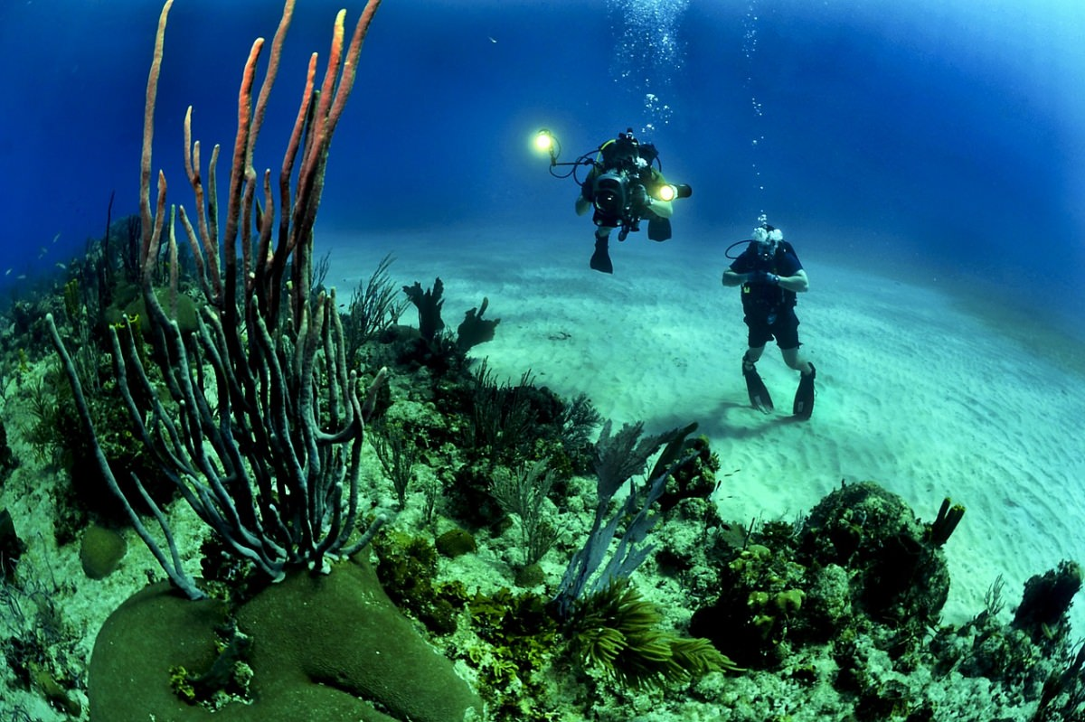 Buceo en las islas Mitsio