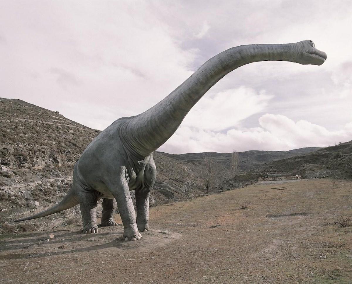 Ruta de los dinosaurios de Enciso