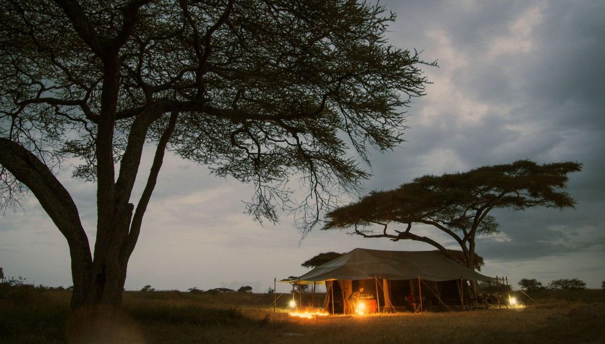Safari en el Serengeti (Tanzania)