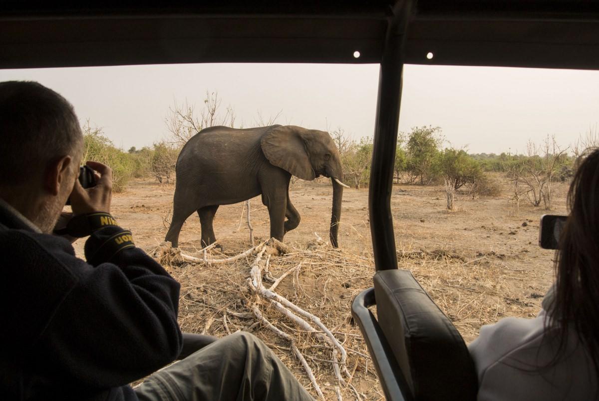 Safari en el parque nacional Chobe (Botswana)