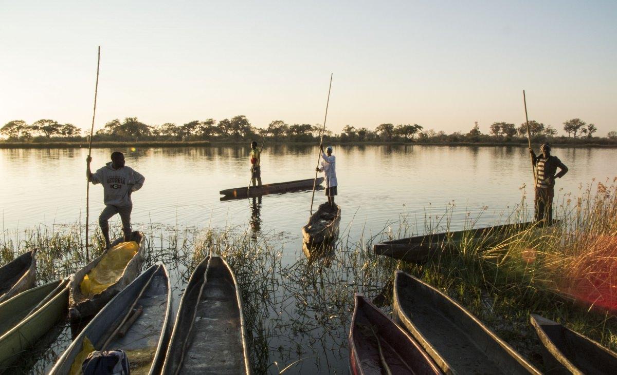 Safari en el delta del Okavango (Botswana)