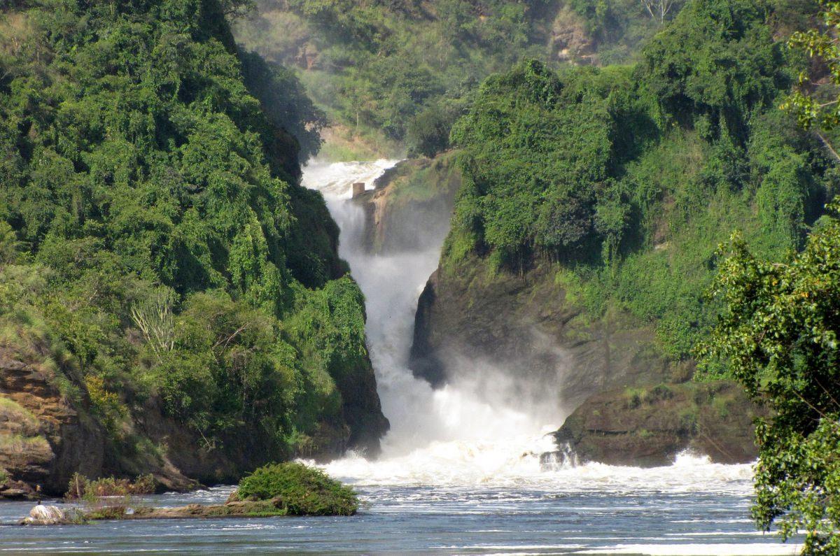 Safari en Murchison Falls (Uganda)