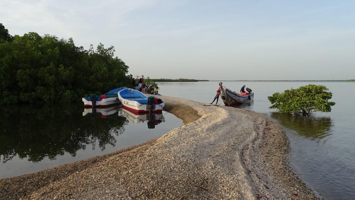 El parque nacional del delta del Saloum