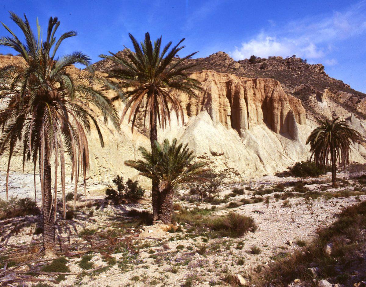 Los desiertos de Abanilla