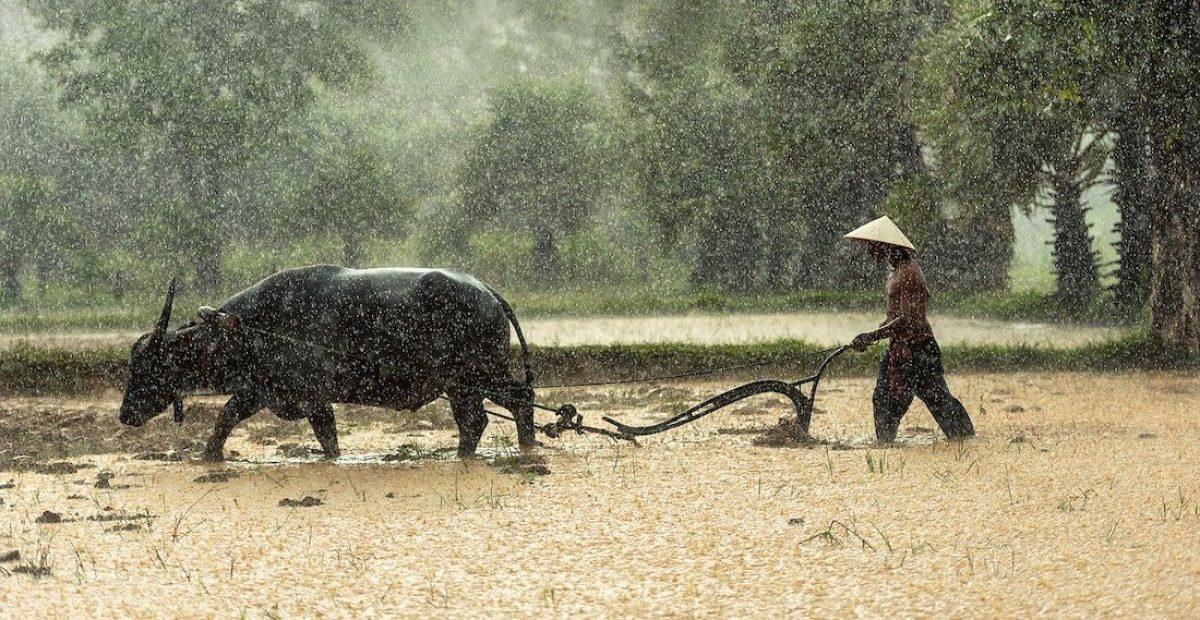 Mejor época para viajar a Birmania