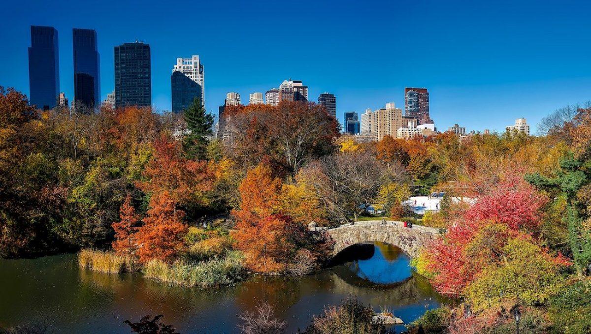 Mis imprescindibles en Central Park