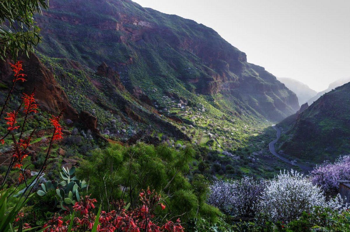 Los barrancos de Gran Canaria