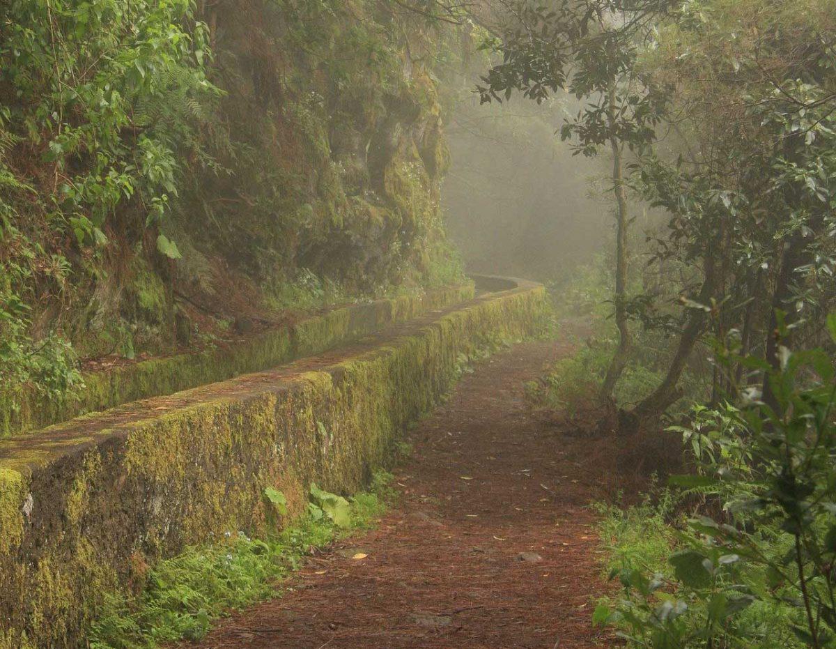 Senderismo en el barranco del Agua, en la cascada de los Tilos o en las nacientes de Marcos y Cordero