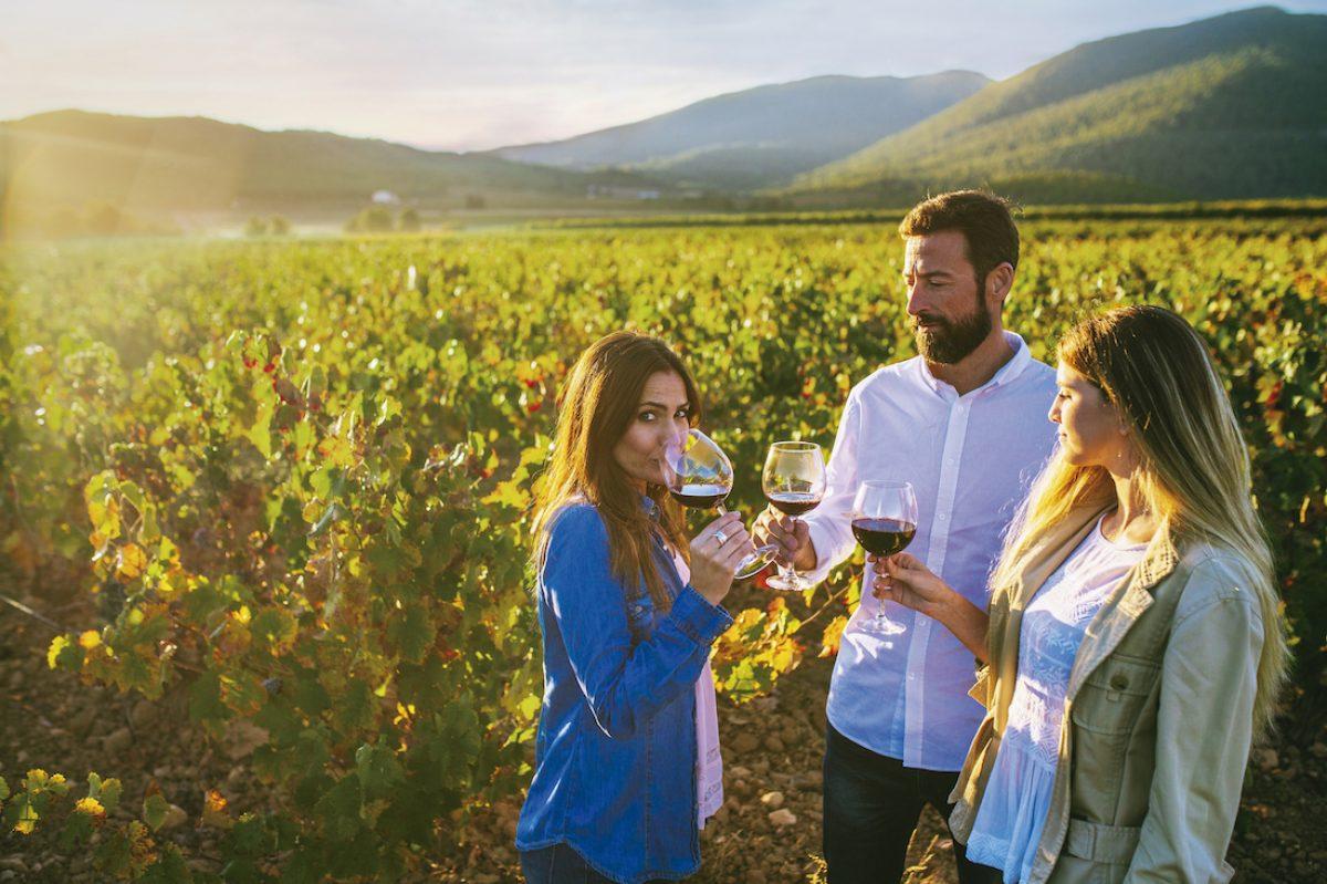 De vinos y castillos por Jumilla y Yecla