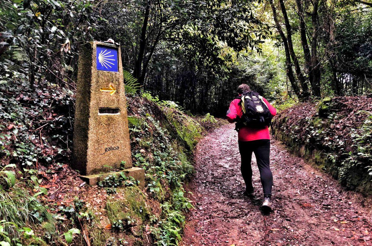ETAPA 2. Sergude-Poulo (23 km)