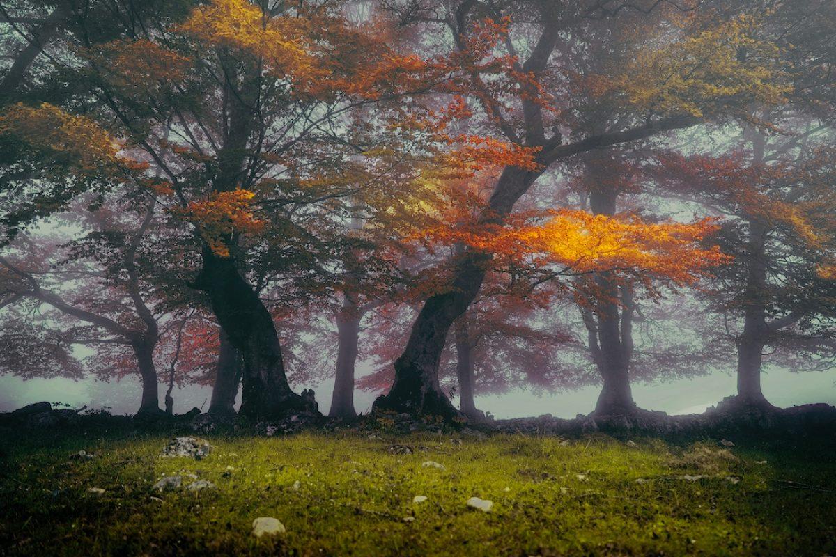 Recorrer el parque natural Urbasa y Andía