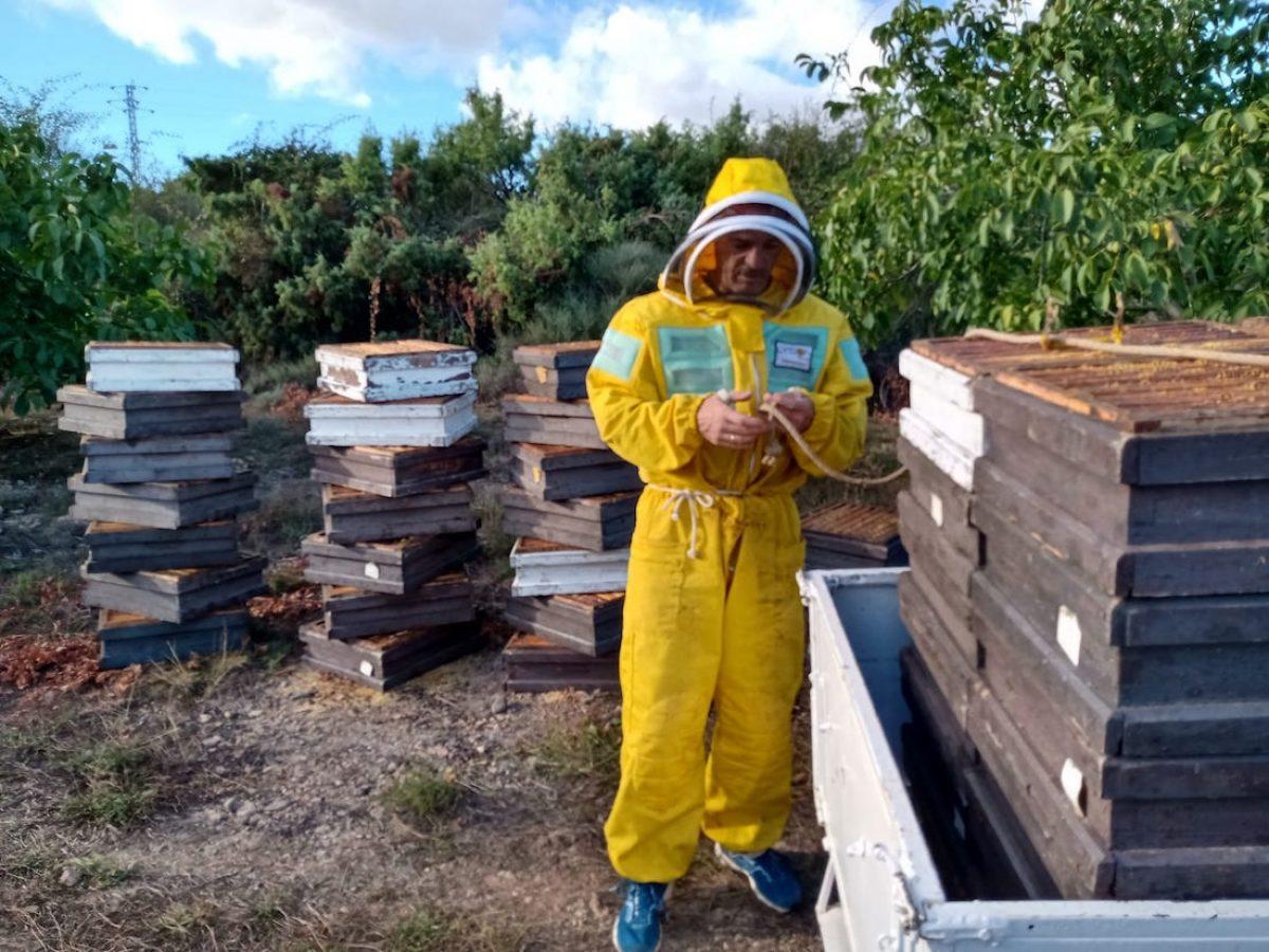 Ser apicultor por un día