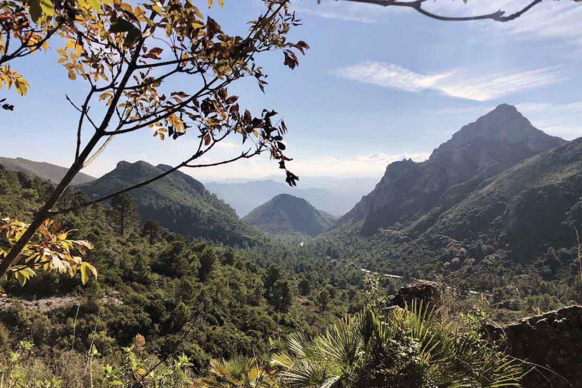 Cueva y paraje natural del Parpalló