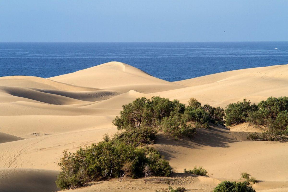 Mejor época para viajar a Gran Canaria