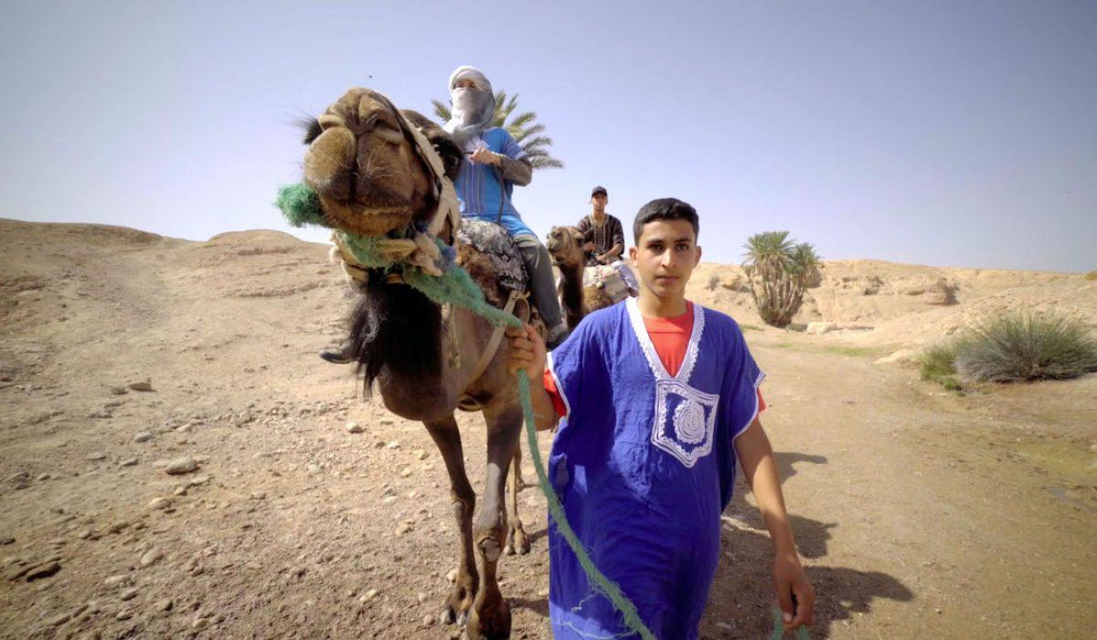 Una excursión al desierto
