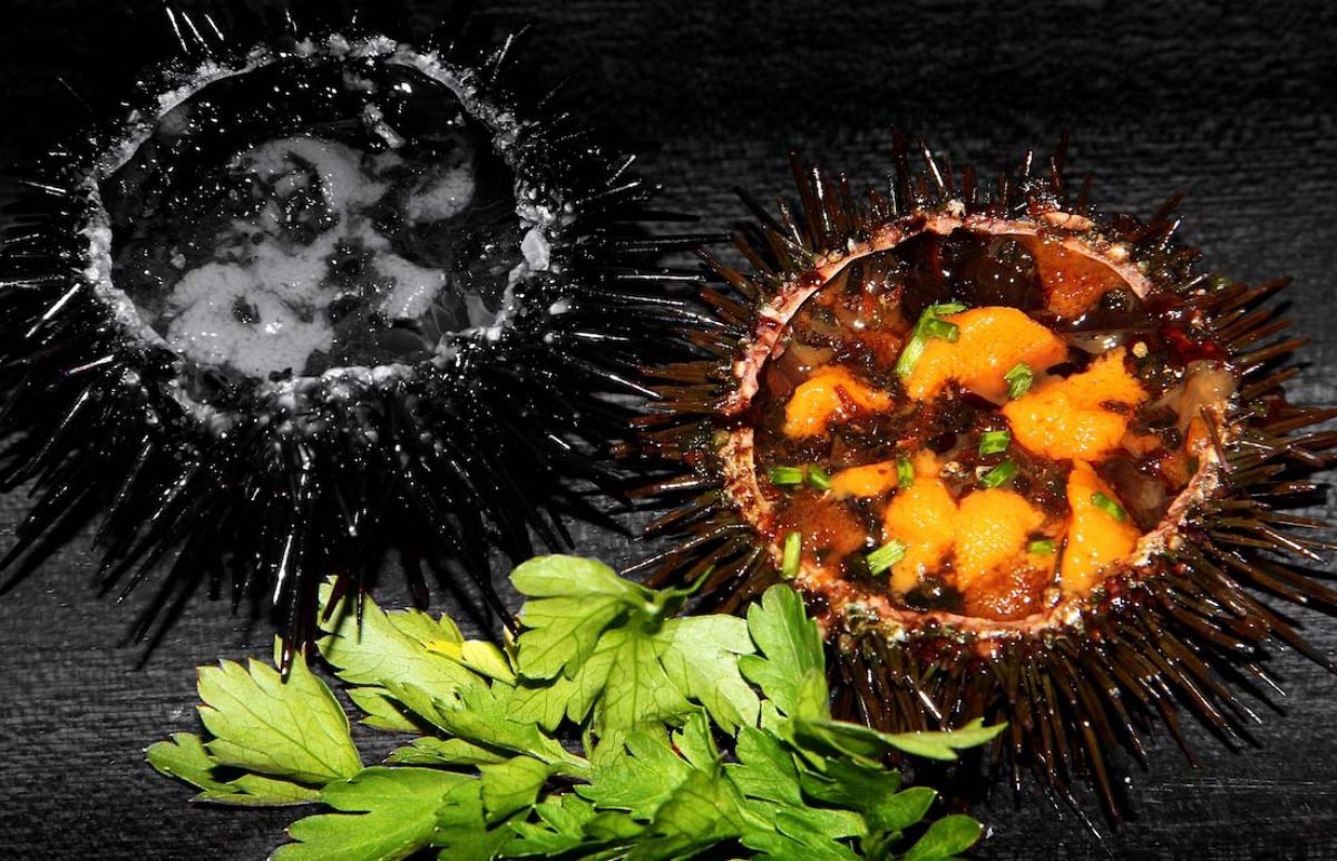 Las delicias de mar