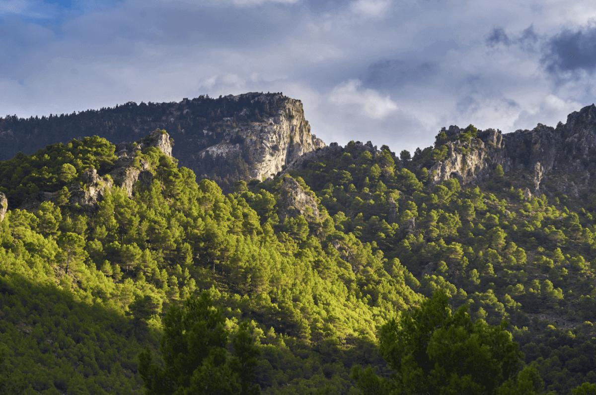 Sierra de las Nieves (Málaga)