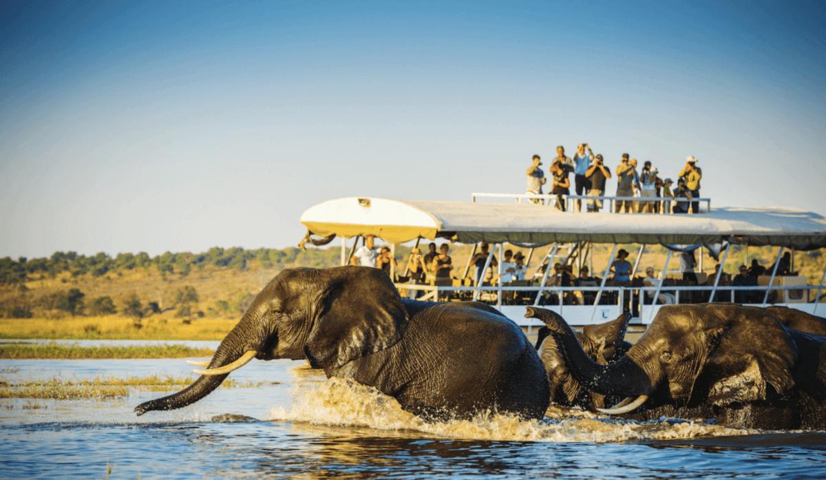 El río Chobe desde Kasane