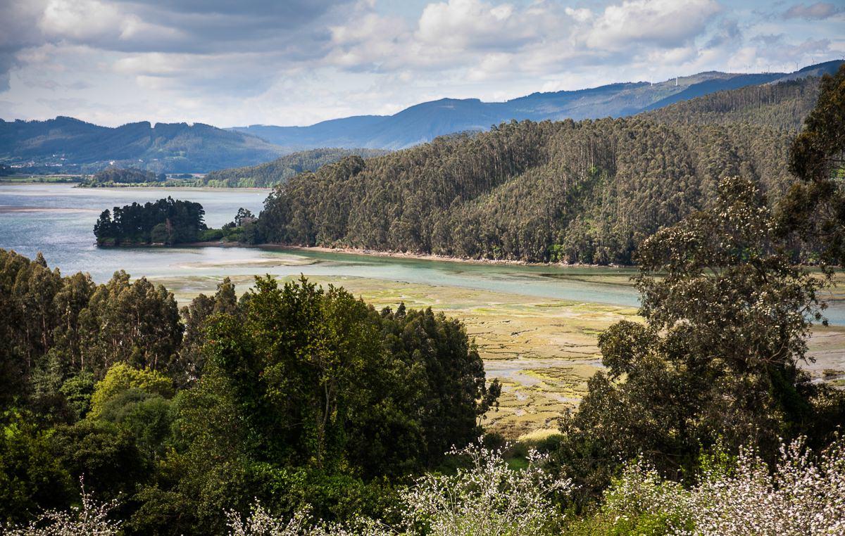 Ría de Ortigueira en bajamar