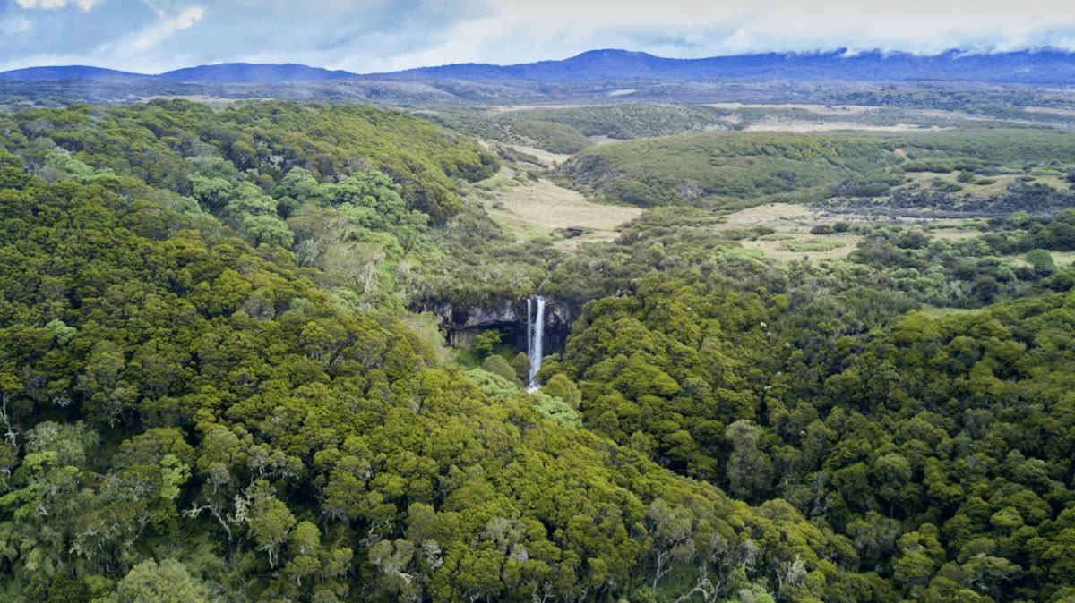 Parque nacional Aberdares