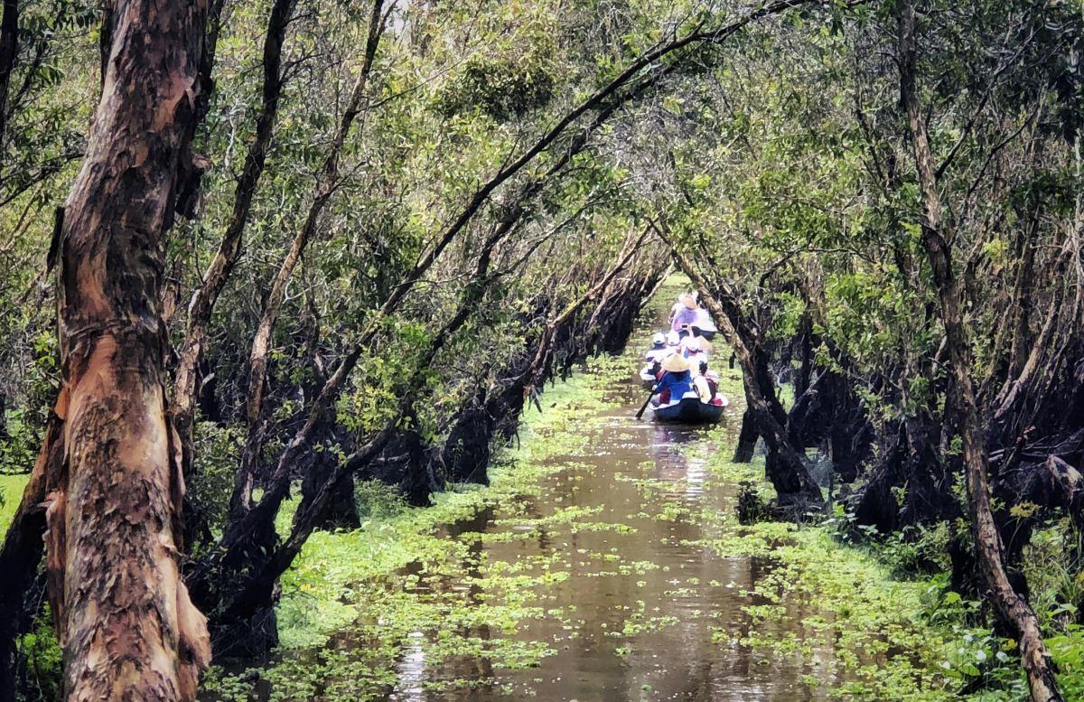 Santuario de aves Tra Sú (Vietnam)