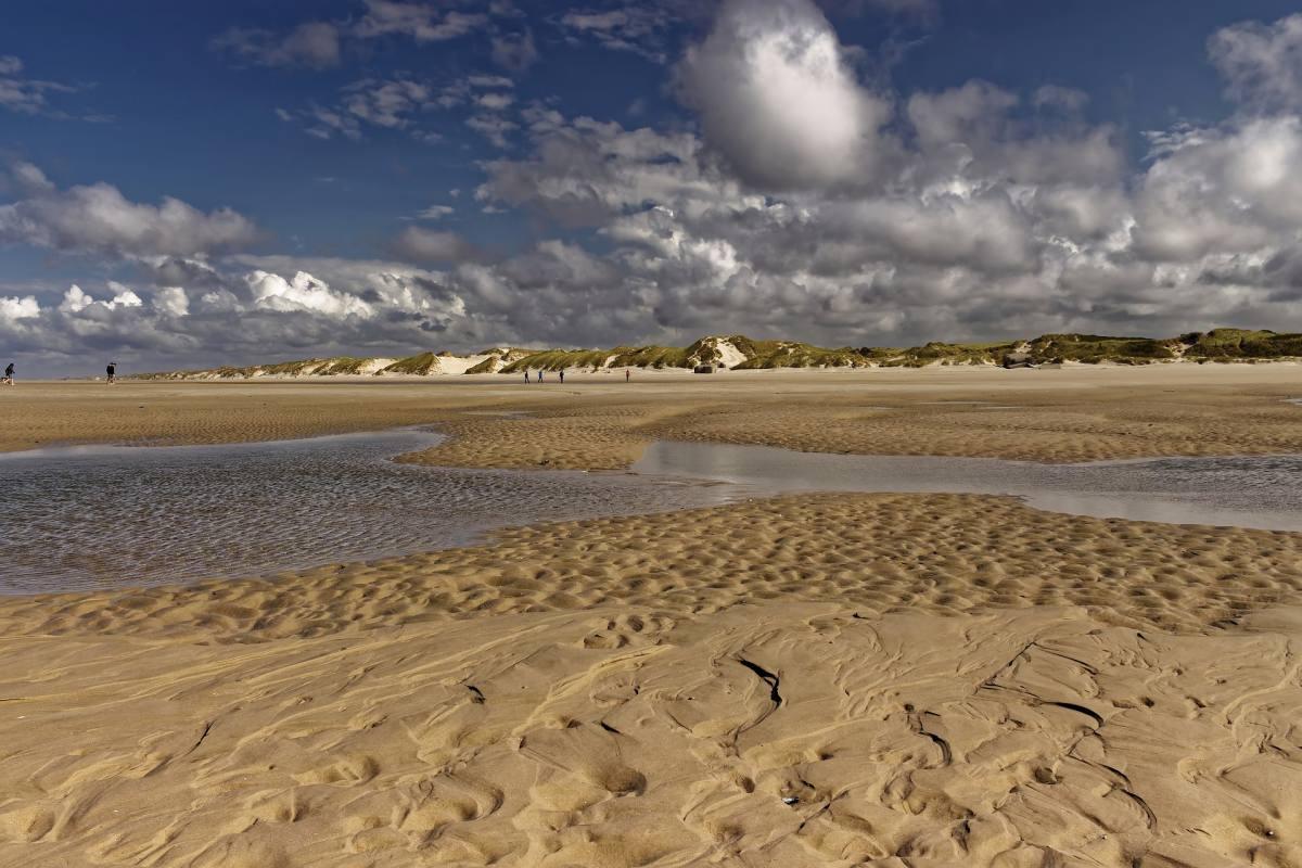 El parque nacional Wadden Sea