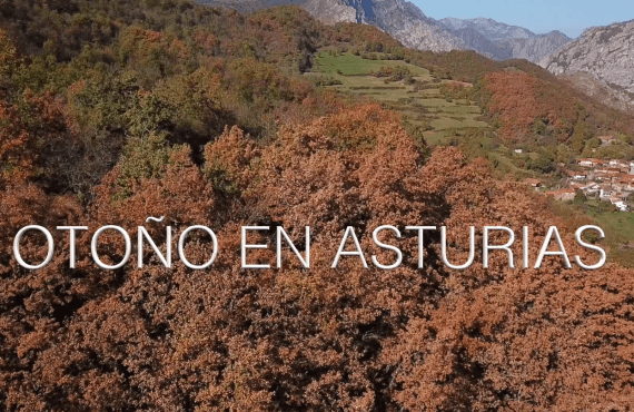 Otoño en Asturias