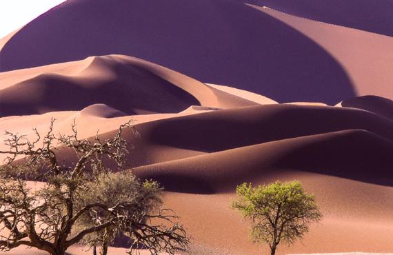 17 sitios que ver en Namibia