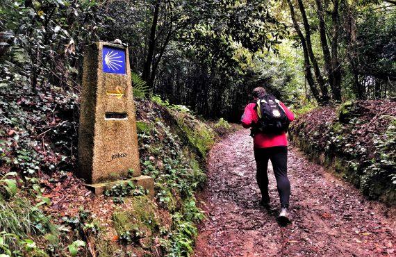 El Camino de Santiago Inglés, de Coruña a Compostela