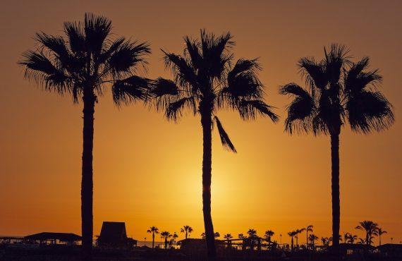 ¿Cuál es la mejor época para viajar a Gran Canaria?
