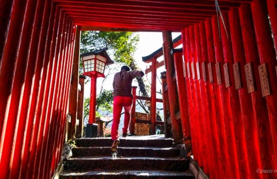 Los colores de Japón