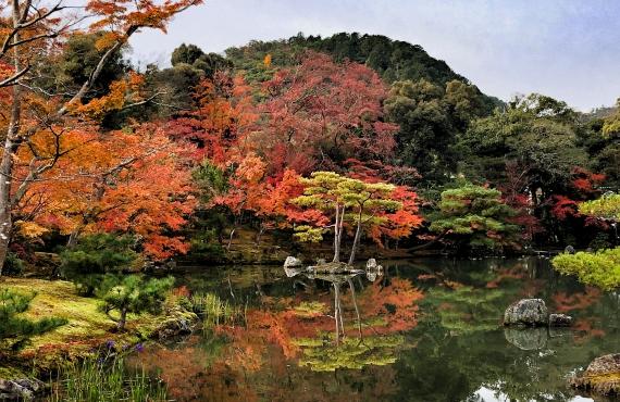 15 sitios que ver en un primer viaje a Japón