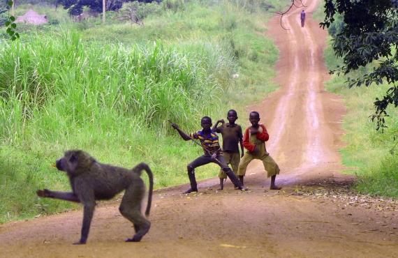 14 sitios que ver en Uganda (además de gorilas)