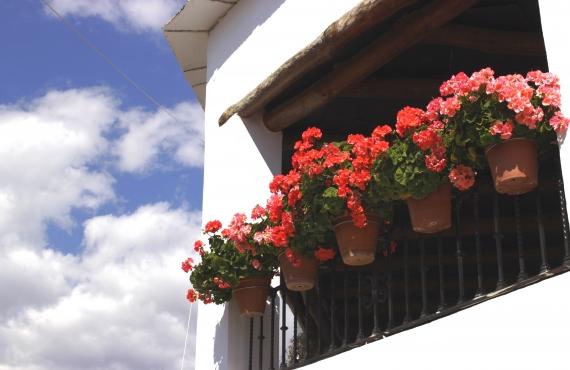 Una ruta por lo mejor de Las Alpujarras