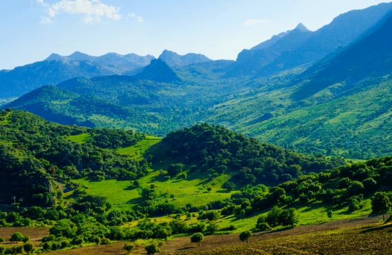 Ruta por los pueblos blancos de la sierra de Grazalema