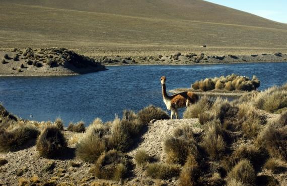 8 excursiones desde Cuzco que no son las típicas